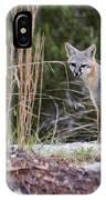 Grey Fox At Rest IPhone X Case