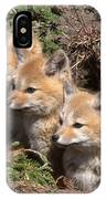 Grey Foxes At Den IPhone Case