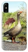 Grey Geese And Goslings IPhone Case