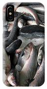 Grey Mullet Fish For Sale At A Fish Auction IPhone Case