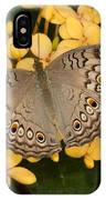 Grey Pansy Butterfly Arizona IPhone Case