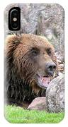 Grizzly Bear 02 Postcard IPhone Case