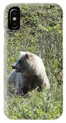 Grizzly One IPhone Case