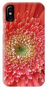 Groovy Gorgeous Gerber IPhone Case