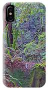 Ground Level Landscape In Armstrong Redwoods State Preserve Near Guerneville-ca IPhone Case