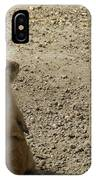 Groundhog With Shadow IPhone Case