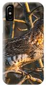 Grouse In A Tree IPhone Case