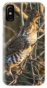 Grouse In An Apple Tree IPhone Case