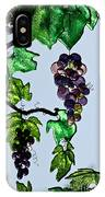 Growing Glass Grapes IPhone Case