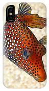 Guinea Fowl Puffer Fish IPhone Case