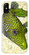 Guinea Fowl Puffer Fish In Green IPhone Case