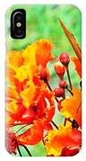 Gulf Fritillary Butterfly On Pride Of Barbados IPhone Case