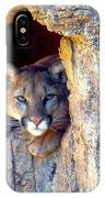 Guardian Of The Cliff IPhone Case