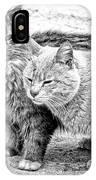 Gutter Kitties Four IPhone Case