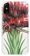 Gymea Lily IPhone Case