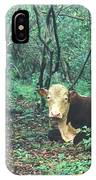 Haleakala National Park Hawaii Cow On Waterfall Trail IPhone X / XS Case