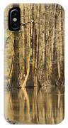 Hall Of Cypress IPhone Case