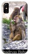 Hamadryas Baboon IPhone Case