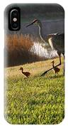 Happy Sandhill Crane Family - Original IPhone Case