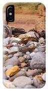 Harbour Seal On Pebble Beach IPhone Case