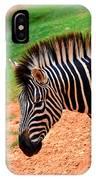Hartman Zebra IPhone Case
