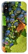 Harvest Time 2 IPhone Case