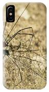 Harvestman Spider IPhone Case