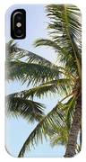 Hawaiian Palm Trees IPhone Case