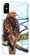 Hawk Love IPhone X Case