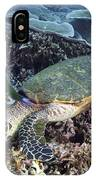 Hawksbill Sea Turtle IPhone Case