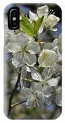 Hawthorn Flowers IPhone Case