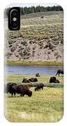 Hayden Valley Bison Herd In Yellowstone National Park IPhone Case