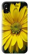 Heliopsis Summer Sun IPhone Case