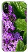 Heliotrope Flowers In Bloom IPhone Case