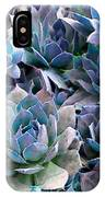 Hens And Chicks Series - Evening Light IPhone Case