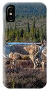 Herd Of Broad Pass IPhone Case
