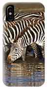 Herd Of Zebras Drinking Water IPhone Case