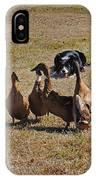 Herding Ducks IPhone Case