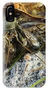 Hermit Crab IPhone X Case