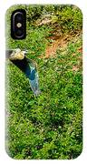Heron Flies Over Oak Creek In Red Rock State Park Sedona Arizona IPhone Case