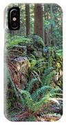 Hidden Rock Wall IPhone Case