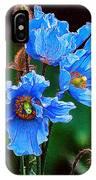 Himalayan Blue Poppy Flower IPhone Case