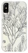 Historical Art Of Coca Plant IPhone X Case