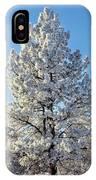 Hoar Frost Ponderos Pine Tree, Sundance IPhone Case