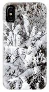 Hoarfrost 18  IPhone Case