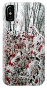Hoarfrost 25 IPhone Case