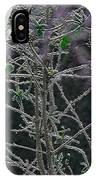 Hoars Frost-featured In Nature Photography Group IPhone Case