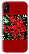 Holly Berries # 2 IPhone Case