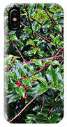 Holly Bush - IPhone Case