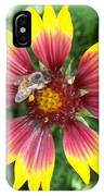 Honey Bee On A Indian Blanket IPhone Case